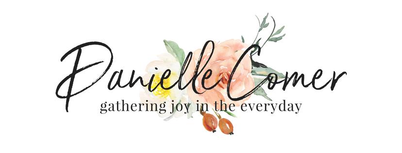 Danielle Comer Blog